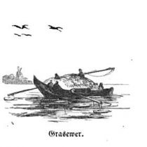 Grasewer